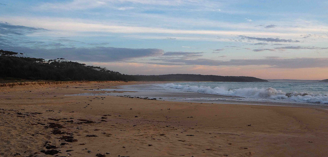 free-beach-campground-nsw