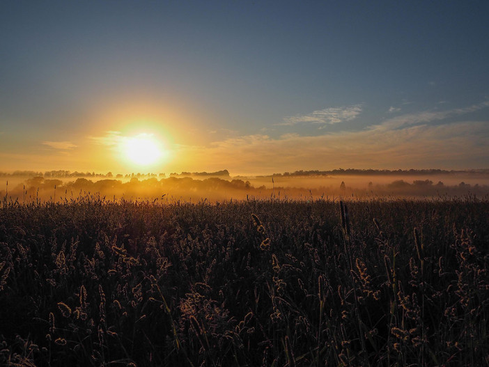 sunrise-caroola-farm