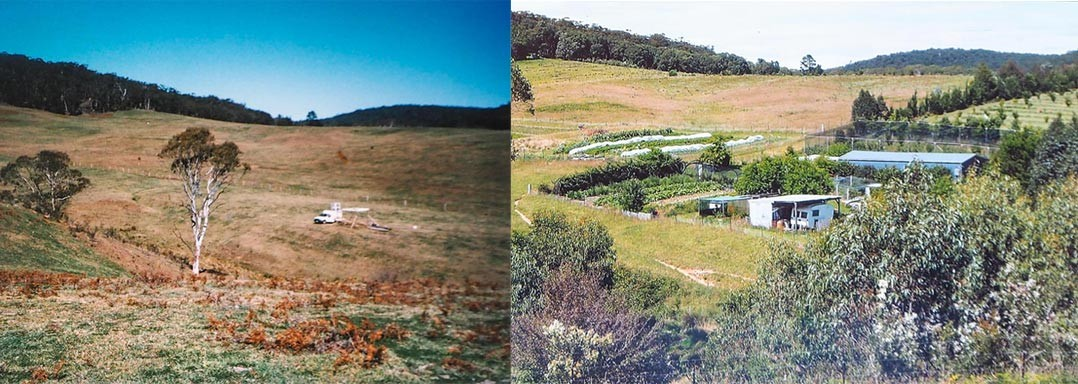 Hazelwood farm comparison 2004-2014
