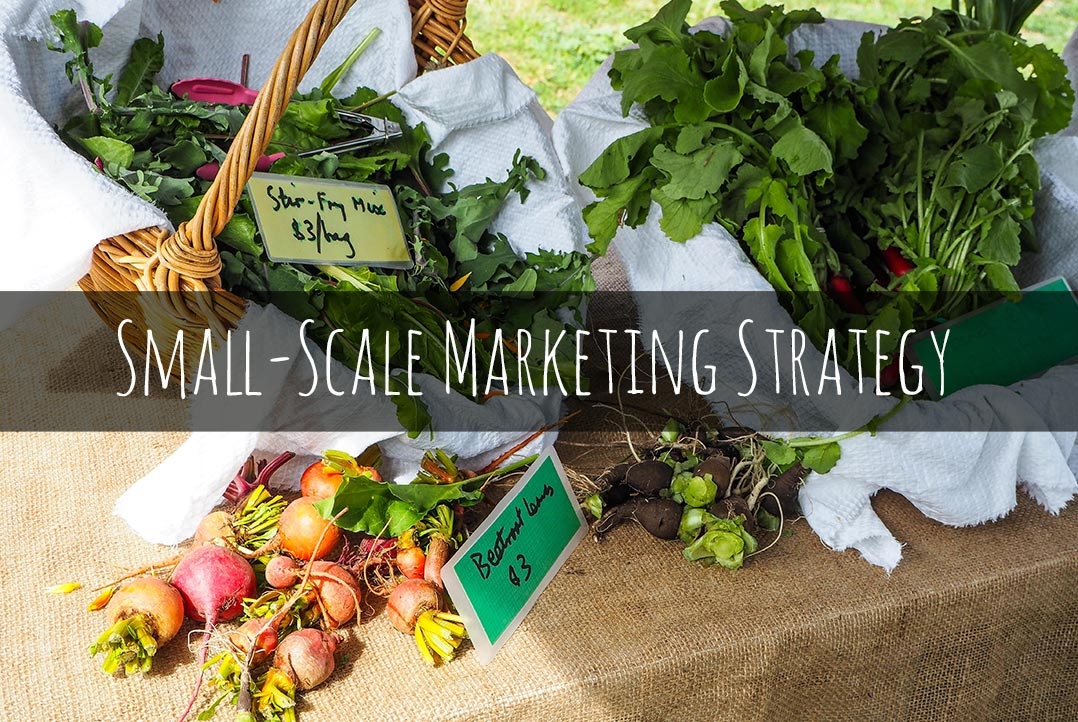 Small-scale farm marketing strategy: Tips & Example - Wandering Farmers